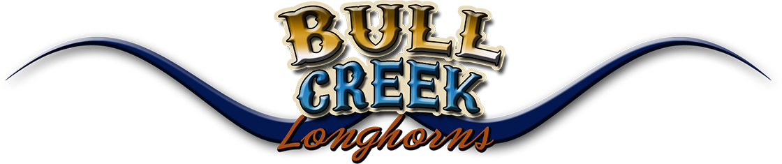 Bull Creek Longhorns Logo